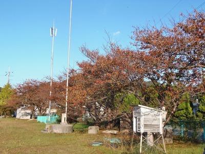 旧青海島小学校の秋色2.jpg