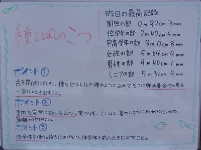 昨日の記録・種飛ばしのコツ.jpg