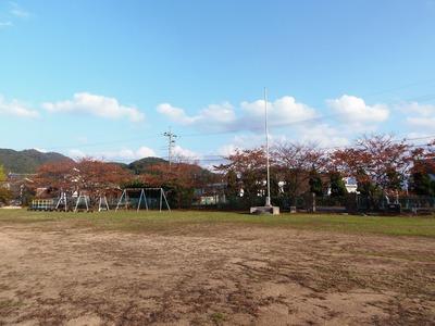 晩秋の色1.jpg