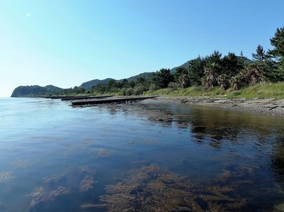 晴れた日の波の橋立海岸.jpg