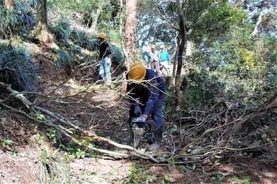 木々の伐採5.jpg