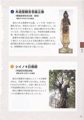 木造聖観音菩薩立像とシイノキ巨樹群.jpg