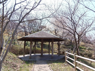 東屋と桜.jpg