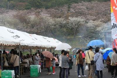 桜とにぎわい.jpg