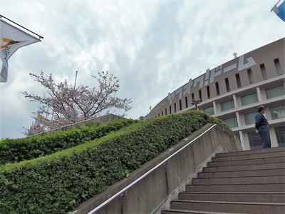 桜とヤフオクドーム.jpg