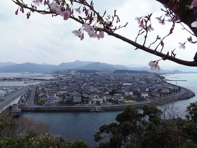 桜と仙崎の町並み.jpg
