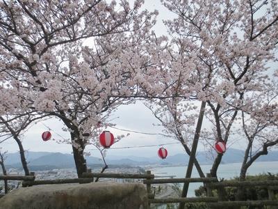 桜と仙崎の町並み1.jpg