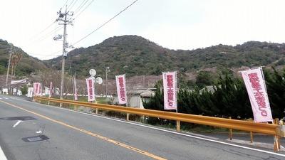 桜まつり会場1.jpg