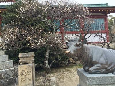 梅と神牛像.jpg
