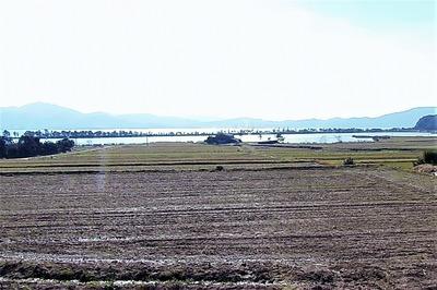 棚田と青海湖と波の橋立.jpg
