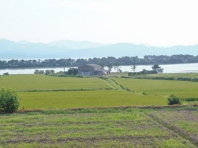棚田と青海湖と波の橋立1.jpg