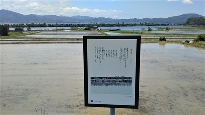 棚田・青海湖・波の橋立2.jpg