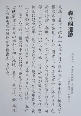 森ヶ岨遺跡説明.jpg