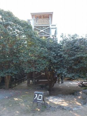 椿群生林展望台.jpg