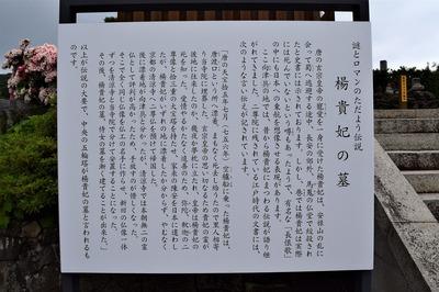 楊貴妃の墓説明.jpg