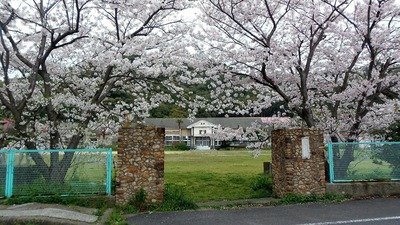 正門と桜.jpg