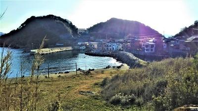 段浦の石積堤防1.jpg