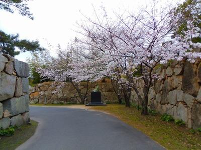 毛利輝元公像と桜3.jpg