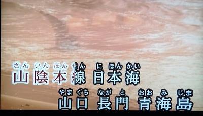 水森かおりさん・青海島.jpg