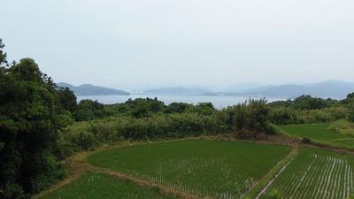 水田と仙崎.jpg