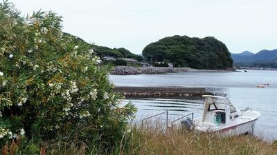 江尻と季節の花.jpg