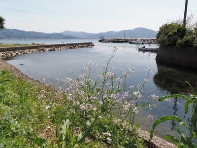 江尻港.jpg