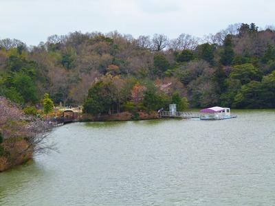 江汐湖.jpg