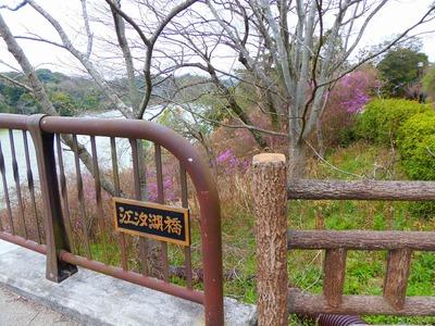 江汐湖橋1.jpg