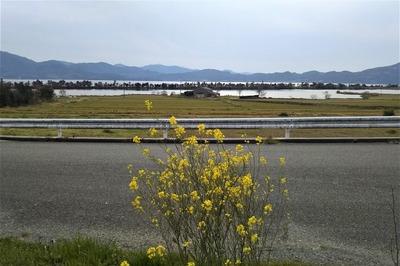 波の橋立と御青海湖と季節の花3.jpg
