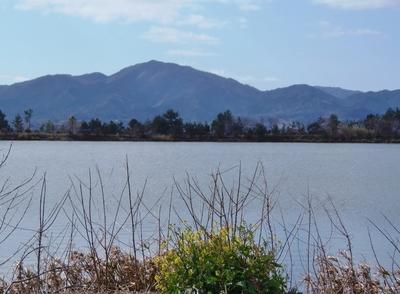 波の橋立と青海湖.jpg