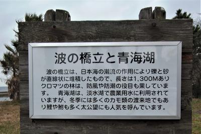 波の橋立と青海湖の説明.jpg