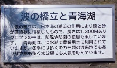波の橋立と青海湖説明.jpg