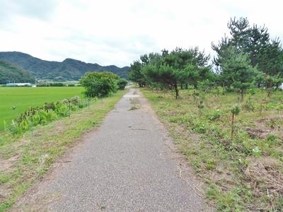 波の橋立の遊歩道.jpg