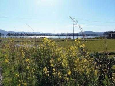 波の橋立・青海湖・季節の花2.jpg