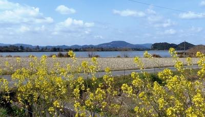波の橋立・青海湖・季節の花7.3.16.jpg