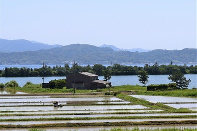 波の橋立・青海湖・棚田.jpg
