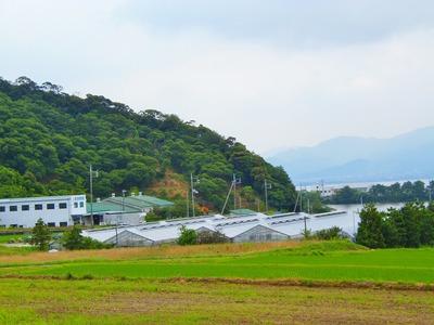 波の橋立・青海湖・棚田4.jpg
