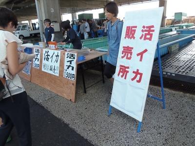 活イカ販売.jpg