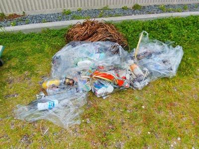 浜辺の回収ゴミ.jpg