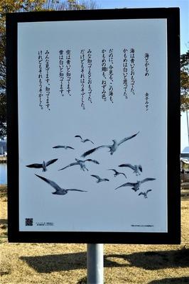 海とかもめ.jpg