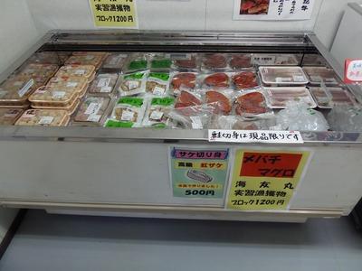 海友丸実習漁獲物.jpg