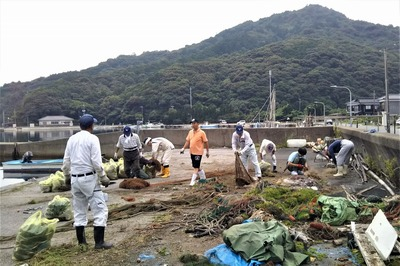 海岸清掃4.jpg