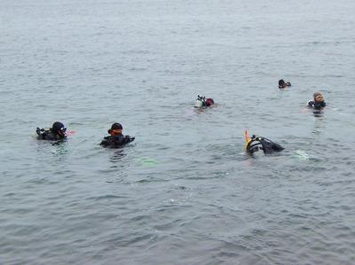 海底の清掃へ3.jpg