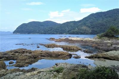 海辺1.jpg