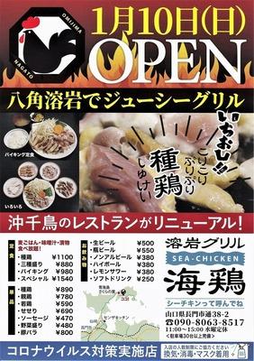 海鶏オープン・チラシ.jpg