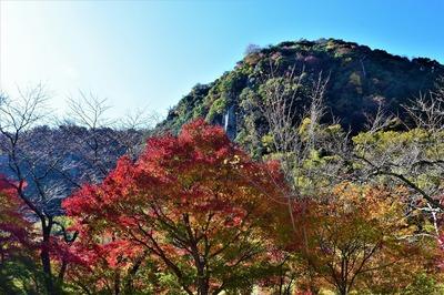 深耶馬渓の紅葉1.jpg