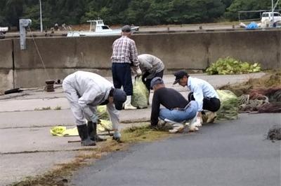 清掃・草取り1.jpg