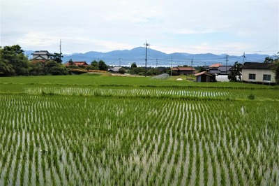 清福寺からの眺望.jpg