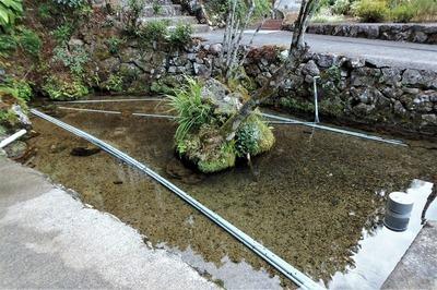 湧水池.jpg