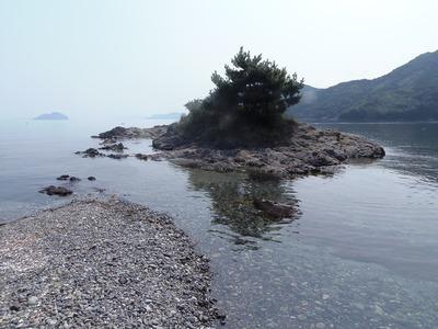 満潮時は小島に変身.jpg